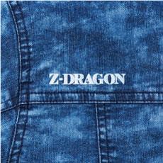 Z-DRAGON 76100 ポイントその5