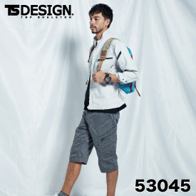 TSDESIGN TSデザイン 藤和 53045